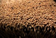 Granos de café secos son procesados por tamaño en Almacafé, en la ciudad de Armenia, provincia de Quindio, 12 de agosto de 2011. Los precios al productor en Colombia cayeron un 0,33 por ciento en junio, frente a un alza de 0,24 por ciento en igual mes del año pasado, debido a una disminución en los costos en los sectores minero y agrícola, informó el viernes el Departamento Nacional de Estadísticas (DANE). REUTERS/Jose Miguel Gomez