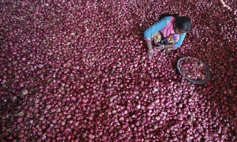 A labourer spreads onions for sorting at a wholesale vegetable market in the northern Indian city of Chandigarh October 29, 2013. The government's efforts to quickly calm soaring onion prices are unlikely to succeed as heavy rains have damaged the crop and delayed harvesting, a worry for the ruling Congress party which is struggling to control inflation as elections loom. REUTERS/Ajay Verma (INDIA - Tags: FOOD BUSINESS POLITICS AGRICULTURE)
