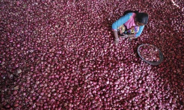 A labourer spreads onions for sorting at a wholesale vegetable market in the northern Indian city of Chandigarh October 29, 2013.  REUTERS/Ajay Verma