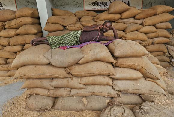 A labourer speaks on a mobile phone while lying on sacks filled with rice at the Agricultural Produce Market Committee (APMC) market yard, on the outskirts of Ahmedabad July 29, 2014. REUTERS/Amit Dave