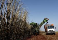 Colheita de cana-de-açucar em uma fazenda de Maringá, no Paraná. 13/05/2011. REUTERS/Rodolfo Buhrer/La Imagem