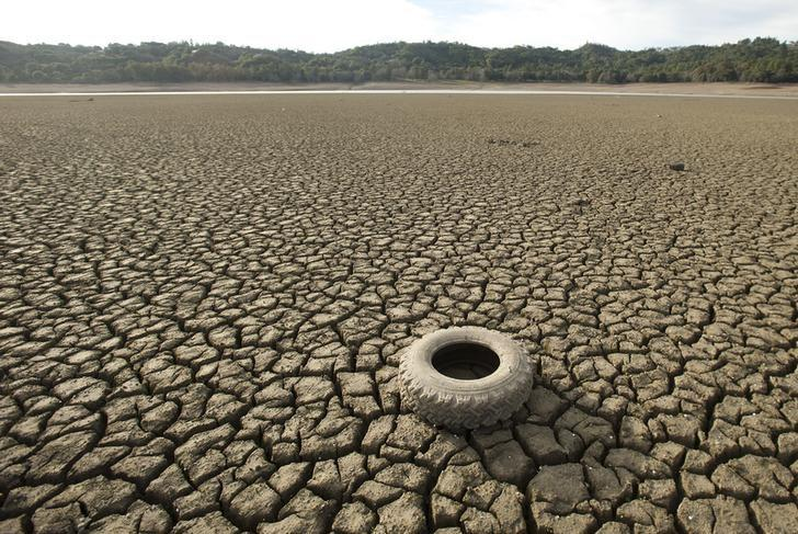 A tire rests on the dry bed of Lake Mendocino, a key Mendocino County reservoir, in Ukiah, California February 25, 2014.  REUTERS/Noah Berger