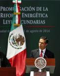En la imagen, el presidente mexicano, Enrique Peña Nieto, durante una audiencia en Ciudad de México. 11 de agosto, 2014. Peña Nieto dijo que la economía local podría crecer cerca de un 5 por ciento anual para el 2018 tras la puesta en marcha de un ambicioso paquete de reformas económicas que el Congreso terminó de sancionar a principios de agosto. REUTERS/Edgard Garrido