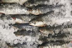 Рыба в магазине в Москве 7 августа 2014 года. Россия пустит вспять экспортные потоки сельди и трески, чтобы накормить страну рыбой после того, как норвежский лосось стал исчезать с полок магазинов из-за эмбарго на ввоз продовольствия с Запада. REUTERS/Maxim Zmeyev
