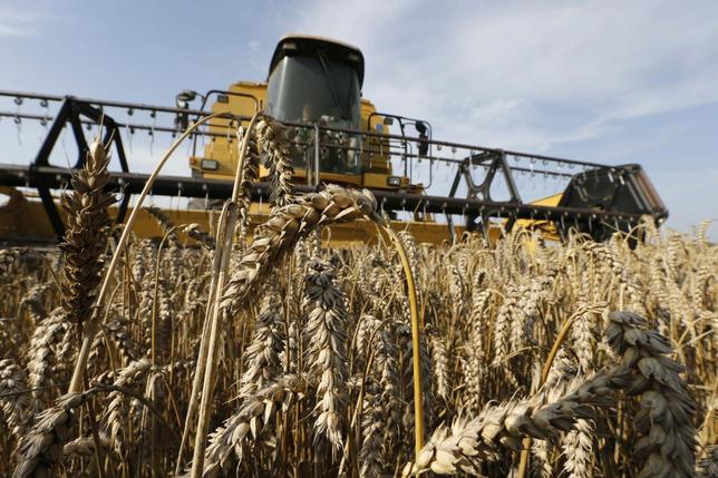 A French farmer drives his combine as he harvests wheat in a field in Oisy-le-Verger, near Douai, northern France, July 18, 2014. REUTERS/Pascal Rossignol