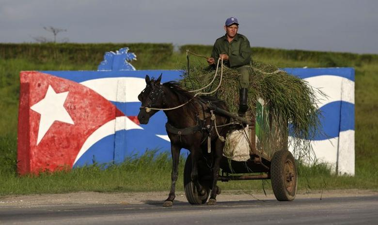 A farmer rides his horse-pulled cart in front of graffiti depicting Cuba's national flag, in Mariel on the outskirts of Havana August 20, 2014.  REUTERS/Enrique De La Osa