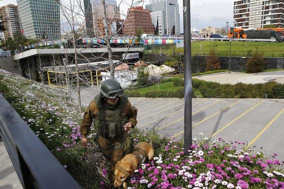 A police officer uses a dog to inspect an area where a bomb exploded in Santiago September 8, 2014. REUTERS-Ivan Alvarado
