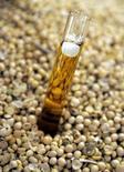 Imagen de arcivo de un tubo con una muestra de biodiésel de soja en Chacabuco, Argentina, oct 6 2005. La producción de etanol crecerá en Argentina gracias a un nuevo aumento en la proporción del biocombustible que deberá tener la gasolina, dijo el martes el líder de un ente que agrupa a los productores de etanol en base a maíz.  REUTERS/Marcos Brindicci