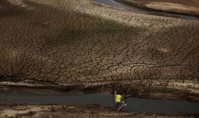 A man tries walks between two trunks towards the cracked ground of the Atibainha dam as it dries up due to a prolonged drought in Nazare Paulista, Sao Paulo state, October 17, 2014. REUTERS-Nacho Doce