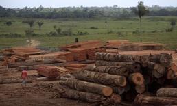 Troncos de árboles talados ilegalmente de la selva amazónica en Viseu, Brasil., sep 26 2013. Países donantes prometieron el jueves 9.300 millones de dólares para un fondo de Naciones Unidas que está ayudando a los países en desarrollo a afrontar las consecuencias del cambio climático, pero ecologistas dijeron que la financiación era insuficiente.  REUTERS/Ricardo Moraes