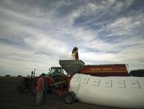 Produtor rural armazena soja em silo-bolsa em cidade argentina de Estación Islas. 03/04/2010 REUTERS/Enrique Marcarian