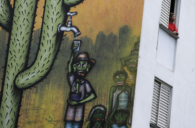A resident looks out of her apartment in a building painted with a drought-related mural, painted by Brazilian artist Mundano, depicting a man getting water from a cactus plant, in Sao Paulo November 25, 2014.  REUTERS/Nacho Doce