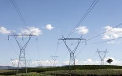 Torres de transmissão de energia em uma fazenda em Santo Antônio do Jardim. 06/02/2014 REUTERS/Paulo Whitaker