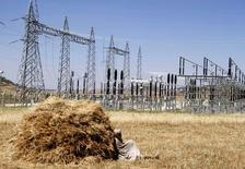 A farmer naps in a barley field next to an electricity power plant at Ashegoda farm near a village in Mekelle, Tigray, 780 km (485 miles) north of Addis Ababa October 25, 2013. REUTERS/Kumerra Gemechu