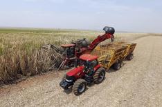 Caña de azúcar siendo cosechada en una plantación de Da Mata en Valparaiso. Imagen de archivo, 18 septiembre, 2014.  El Gobierno de Brasil redujo el viernes su pronóstico para la cosecha de caña de azúcar en el 2014/2015 ante el impacto de una sequía en la principal región productora del centro-sur del país, aunque elevó su estimado para la producción de etanol.  REUTERS/Paulo Whitaker