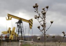 Exploitation pétrolière du géant Rosneft dans la région de Krasnodar. La production de pétrole de la Russie a atteint en 2014 son plus haut niveau depuis la fin de l'Union soviétique avec une moyenne de 10,58 millions de barils par jour (bpj), soit une hausse de 0,7%,. /Photo prise le 21 décembre 2014/REUTERS/Eduard Korniyenko