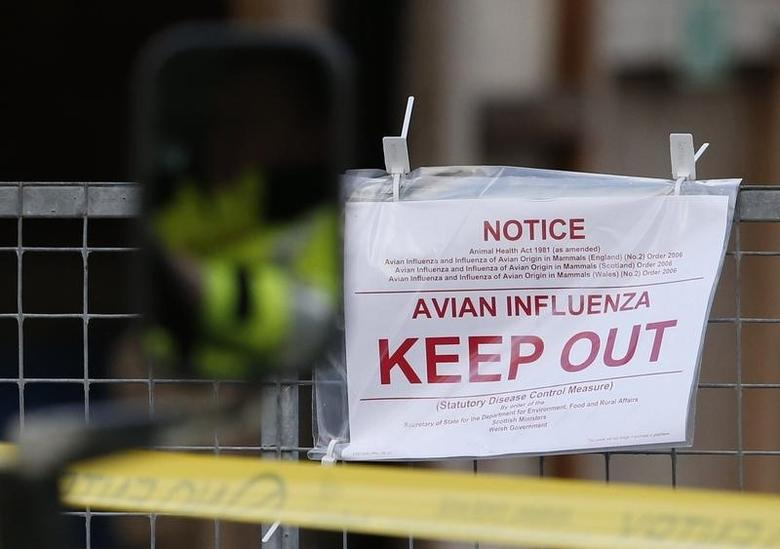 Police tape and warning signs are seen outside a duck farm in Nafferton, northern England November 17, 2014.    REUTERS/Phil Noble