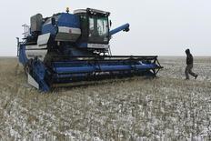 Комбайн на пшеничном поле в селе Львовка в Павлодарской области Казахстана. 29 октября 2014 года. Проливные дожди и ранний снег сократили урожай зерновых в Казахстане до 17,2 миллиона тонн в чистом весе в 2014 году по сравнению с урожаем в 18,2 миллиона тонн в 2013 году, свидетельствуют официальные данные, опубликованные в четверг Комитетом по статистике. REUTERS/Vladimir Bugayev