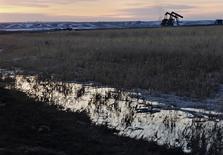 Нефтяные станки-качалки в Уиллистоне, Северная Дакота. 14 марта 2013 года. Управление энергетической информации США (EIA) сохранило прогноз добычи нефти в стране в 2015-2016 годах вопреки ожиданиям, что добыча будет снижаться из-за падения мировых цен. REUTERS/Shannon Stapleton