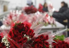 Bouquets of roses are seen at Elite Flowers, one of the largest floral distributors in the United States as it prepares for one of their biggest holidays by moving more than 700 million flowers in the 2 weeks leading up to Valentine's Day, in Miami Florida, February 3, 2015.  REUTERS/Andrew Innerarity