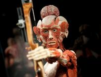 """A plastinated human body is displayed during a press preview prior to the opening of """"Body Worlds"""" permanent exhibition by German anatomist Gunther von Hagens at the Menschen Museum in Berlin February 17, 2015. REUTERS/Stefanie Loos"""