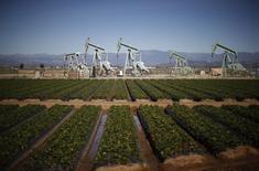 Нефтяные станки-качалки рядом с клубничным полем в Окснарде, Калифорния. 24 февраля 2015 года. Цены на нефть Brent растут за счет повышения производственной активности в Китае, гибкой позиции ФРС в вопросе повышения процентных ставок и одобрения еврозоной планируемых реформ в Греции. REUTERS/Lucy Nicholson