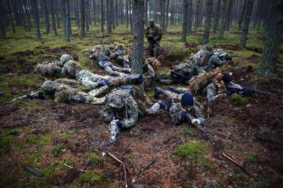 Polish militia volunteers surge
