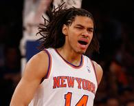 New York Knicks' Chris Copeland in May 2013.  REUTERS/Mike Segar