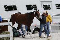 May 13, 2015; Baltimore, MD, USA; Horse trainer Bob Baffert walks American Pharoah off of a transport trailer into the Preakness Barn after arriving for the 140th Preakness Stakes at Pimlico Race Course. Mandatory Credit: Geoff Burke-USA TODAY
