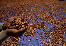 Un granjero sostiene granos secos de cacao en Gantarang Keke, Indonesia, mayo 8 2015. El fenómeno de El Niño elevaría el déficit de cacao a nivel mundial y haría que los precios de los contratos a futuro del grano en Londres trepen en torno al 20 por ciento, dijo un importante ejecutivo de la casa comercializadora de materias primas, Sucden. REUTERS/Yusuf Ahmad