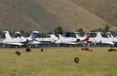 Cows graze outside the Sun Valley airport, where dozens of private and corporate jets are parked, in Hailey, Idaho July 8, 2014.  REUTERS/Rick Wilking