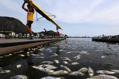 Peixes mortos junto a atletas na Lagoa Rodrigo de Freitas, no Rio de Janeiro. 13/4/2015.   REUTERS/Ricardo Moraes