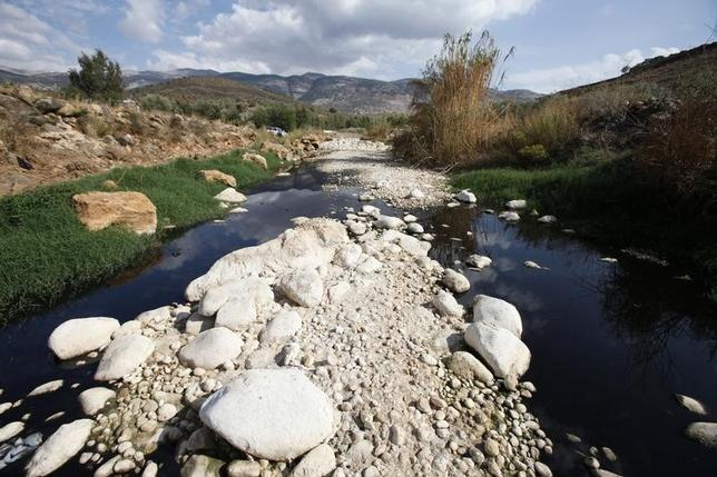 A dried out area of the Hasbani River is seen near Mount Haramoun in southern Lebanon in this October 31, 2010 file photo. REUTERS/Jamal Saidi/Files