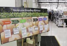 Un cartel muestra el proceso de las semillas en la planta de procesamiento molecular de Monsanto, en Chesterfield, Misuri, 28 de julio de 2014. Monsanto, la mayor compañía mundial de semillas, reportó el miércoles ganancias mejores a lo esperado en el tercer trimestre, aunque advirtió de desafíos en el mercado más adelante y dijo que todavía busca adquirir a su rival suizo Syngenta AG. REUTERS/Tom Gannam