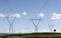 Torres de transmissão de energia em fazenda de café em Santo Antônio do Jardim. 06/02/2014 REUTERS/Paulo Whitaker