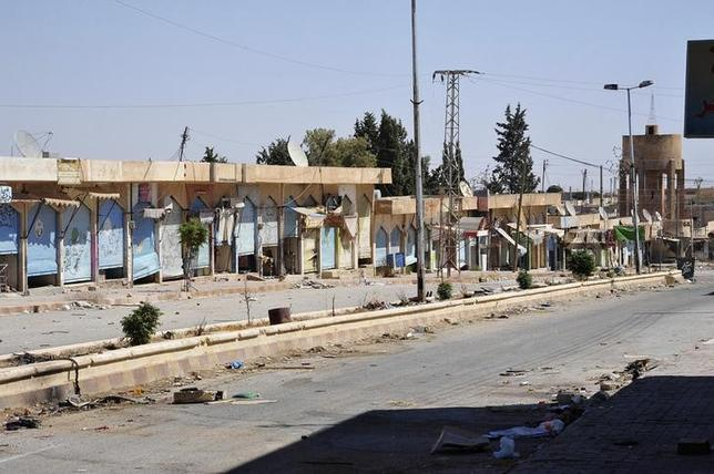 A general view is seen of Ain Issa in the suburb of Raqqa, eastern Syria September 13, 2013. REUTERS/Nour Fourat