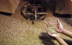 Un trabajador muestra granos de café en la fábrica Sumatra, en Santo do Pinhal, Sao Paulo, 18 de mayo de 2012. La campaña de café de Brasil para este año, que está en sus últimos días de cosecha, sería de 42,15 millones de sacos de 60 kilos, un 5 por ciento menos que los 44,28 millones previstos en junio, dijo el martes el Ministerio de Agricultura. REUTERS/Nacho Doce