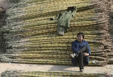 Homem ao lado de cana de açúcar em Nanjing, na China.   11/12/2010     REUTERS/Sean Yong