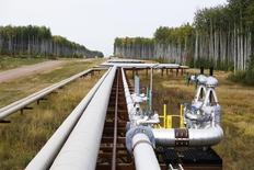 Pipelines run at the McKay River Suncor oil sands in-situ operations near Fort McMurray, Alberta, September 17, 2014.   REUTERS/Todd Korol