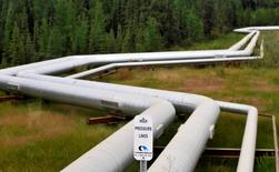 Pipelines at Canadian Natural Resources Limited's (CNRL) Primrose Lake oil sands project are seen near Cold Lake, Alberta August 8, 2013. REUTERS/Dan Riedlhuber