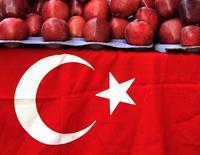 """Турецкий флаг на стенде уличного торговца в Стамбуле 10 ноября 2007 года. Россия запретит ввоз овощей и фруктов из Турции """"через несколько недель"""" во избежание роста цен, но эмбарго в отношении промышленных товаров пока вводиться не будет, сказали российские правительственные чиновники на совещании в понедельник. REUTERS/Fatih Saribas"""