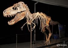 Скелет тарбозавра на архивном фото, полученном Рейтер 17 октября 2012 года. Голливудский актер Николас Кейдж согласился передать американским властям редкий череп динозавра, купленный им за $276.000, чтобы раритет был возвращен в Монголию. REUTERS/U.S. Department of Justice/Handout