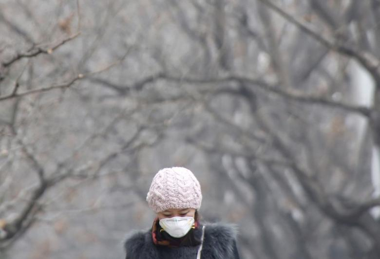 A woman wearing a protective mask makes her way on a heavily polluted day in Beijing, December 26, 2015. REUTERS/Kim Kyung-Hoon