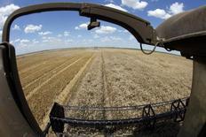 Una cosechadora de granos en un trigal en Orezu, Rumania, jul 2, 2014. La Comisión Europea rebajó el viernes su pronóstico de  inventarios de trigo blando en la Unión Europea para fines de la campaña 2015/16 a 15,8 millones de toneladas desde 17,6 millones el mes pasado, porque un incremento en la demanda está contrarrestando una revisión al alza de la cosecha 2015.  REUTERS/Bogdan Cristel