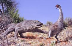 A giant flightless bird known as Genyornis newtoni (R) is surprised on her nest by a 1 ton, predatory lizard named Megalania prisca in Australia roughly 50,000 thousand years ago, in this illustration courtesy of Peter Trusler, Monash University, Melbourne, Australia.  Scientists said on 29 January, 2016 that burn patterns detected on Genyornis eggshell fragments indicate that the humans who first arrived to prehistoric Australia roughly 50,000 years ago gathered and cooked the big bird's eggs, playing havoc with its reproductive success and possibly contributing to its extinction. REUTERS/Illustration courtesy of Peter Trusler, Monash University/Handout via Reuters