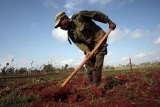 Un granjero trabajando un cultivo en La Lisa, Cuba, mar 28, 2014. Los agricultores cubanos reportaron en enero rendimientos bajos de azúcar en la cosecha de la caña debido a las lluvias fuera de temporada y el calor, circunstancias que frustran las esperanzas de igualar la producción del año pasado.    REUTERS/Stringer/Cuba