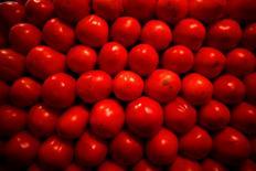Imagen de archivo de unos tomates en el mercado de La Merced en ciudad de México, ene 31, 2013. La inflación de México se aceleró levemente en la primera quincena de abril, a un 2.60 por ciento interanual, presionada por algunos productos agropecuarios, aunque todavía sigue en línea con lo proyectado por el banco central, mostraron el viernes cifras oficiales.  REUTERS/Tomas Bravo