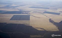 Вид на поля близ Астаны 8 октября 2015 года. Казахстан, крупнейший производитель зерна в регионе, привлечет $300 миллионов средств Исламского банка развития для строительства водоводов и восстановления системы орошения земель в двух областях страны, сообщил Минсельхоз. REUTERS/Shamil Zhumatov