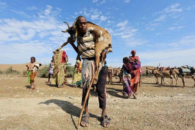 wider image struggling for survival in drought hit so land  images of the impact of the drought in so land can be seen a reuters wider image photo essay reut rs 235ibdj