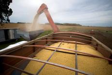 Una cosechadora de grano en un sojal en Estación Isñlas, Argentina, abr 3, 2010. La calidad de la soja de Argentina se vio golpeada por hongos y enfermedades generadas por las lluvias, lo que está llevando a agricultores a sufrir descuentos de hasta el 35 por ciento en el precio de sus granos, dijeron a Reuters expertos del sector.  REUTERS/Enrique Marcarian